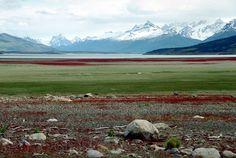 The Patagonian Landscape near El Calafate