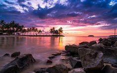 Scarica sfondi oceano, isola tropicale, alba, costa, mattina, tropici