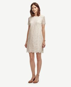 "Crafted in refined lace, this scallop-edged closet essential embodies modern femininity. Jewel neck. Short sleeves. Hidden back zipper with hook-and-eye closure. Lined body, unlined sleeves. 18 1/2"" from natural waist."