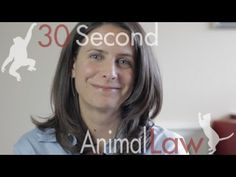 What Laws Protect Animals who are Raised for Food? | 30 Second Animal Law aldf.org