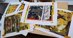 DSC_0066  stephanie redfern  flying rainforest pages