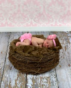 SET Chocolate Fur & Wood Branch Nest Owl Bird Photography Prop Newborn Baby - Beautiful Photo Props