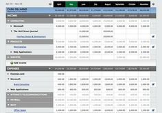 PulseApp uses table sections to show income and expenses details, but also to group data in subsections that will show even more details. Each section and subsection is expandable.