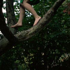 barefoot tree climbing