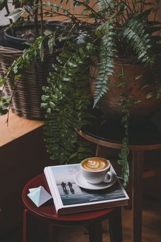 The Nomad's Cafe and Travel Guide to Basel — The Way to Coffee Coffee Farm, Coffee Blog, Chemex Coffee Maker, Coffee Guide, News Cafe, Concrete Wall, Basel, Weekend Getaways, Sunny Days