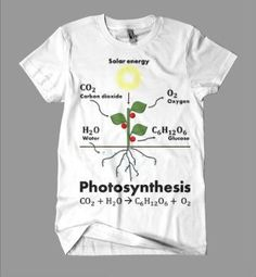 The BrightTees Photosynthesis T-shirt is a high-quality, originally designed t-shirt, presenting a classic yet refined illustration of the plants photosynthesis process. Photosynthesis is the most imp