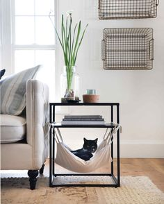 Learn how to make a cozy, comfortable cat hammock for your furry friend. Hung from the bottom of an end table, this hammock is the perfect spot for your cat to rest. Diy Cat Hammock, Diy Cat Bed, Lit Chat Diy, Cool Cat Beds, Pet Furniture, Furniture Removal, Plywood Furniture, Furniture Stores, Cheap Furniture