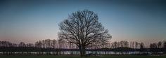 Spring alert by Kim von Essen on 500px