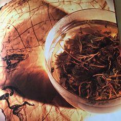 """О древних прорицательницах🙏 """"А что древние оракулы порой нуждались в некоторой двусмысленности, неясности, иносказательности, этому удивляться не приходится. Ведь никто, клянусь Зевсом, не опустился до того, чтобы вопрошать оракул о покупке раба или о ремесленных заботах: нет, обращались к богу могущественные государства, цари и тираны, замышлявшие необычное;»  Отрывок из книги: Плутарх. «О том, что пифия более не прорицает стихами.»"""