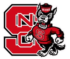 NC State Park Scholarship essays - do they need to be double spaced?