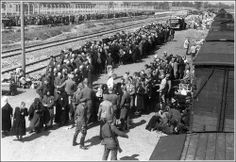 1943. Auschwitz-Birkenau. Selecting hungarian transport. In the foreground in uniform and with smoke  Mengele himself take care the process.