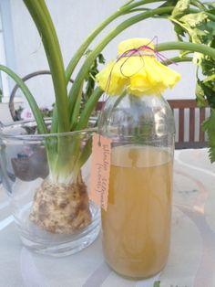 Winko selerowe o ananasowym smaku Przepis wg Stefanii Korżawskiej  Ma charakter oczyszczający i wzmacniajacy organizm, poprawiający pracę nerek. Irish Cream, Glass Vase, Food And Drink, Vogue, Liqueurs, Decor, Diy, Decoration, Bricolage