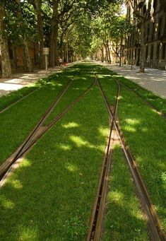 Europe's Grass-Lined Tram Tracks There's something quite magical about watching trams in Barcelona, Strasbourg or Frankfurt glide silently along beds of grass as they do their city circuit. Where possible, this attractive combination of efficient public transport and inspired landscaping should be standard as part of the urban fabric. - Monocle Magazine via agpopovska: handa