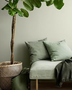The new Jotun Lady colors are here, and the new chart is called Rhythm of Life. Because life at home has its own pulse, a rhythm that effects the way we live, choices we take and how we see the world. Jotun Lady, Color Trends 2018, 2018 Color, Green Rooms, Green Living Room Walls, Deco Design, Wall Colors, Colours, Green Paint Colors