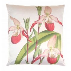 Lady Orchid Pillow, Pink