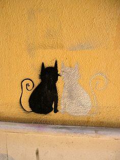 black cat, white cat - street art in Málaga, Spain