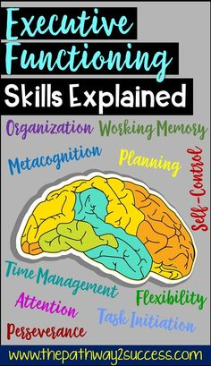 Executive Functioning Skills Explained Executive Functioning Skills Explained,ADHD Understand all the parts of executive functioning skills for elementary, middle, and high school students to help them success. These skills can help kids and teens. Study Skills, Life Skills, Learning Tips, Teaching Skills, Teaching Biology, Teaching Ideas, Working Memory, Time Management Skills, Self Management For Kids