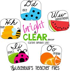 Check these out from my friend Kristen -- Ladybug's Teacher Files: Bright and Clear Decor (Cursive Alphabet Line)