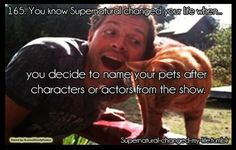 I have a cat named Ruby. Do you have pets named after characters on the show? ~Mama Winchester/Melissa |   Credits: http://supernatural-changed-my-life.tumblr.com/
