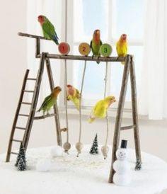 34 new ideas pet bird toys budgies Homemade Bird Toys, Diy Bird Toys, Diy Parrot Toys, Parrot Perch Diy, Bird Perch, Parakeet Toys, Diy Cockatiel Toys, Diy Bird Cage, Bird Stand