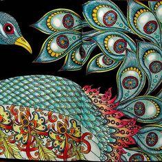 Dagdrommar.#dagdrommar #dagdrommarhannakarlzon #adultcolouring #colouringbook #peacock