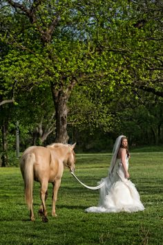 Kathleen's Fort Worth Adventure Bridal Portrait on a Horse » Family Photography in Midlothian | Dallas-Fort Worth Wedding Photographer