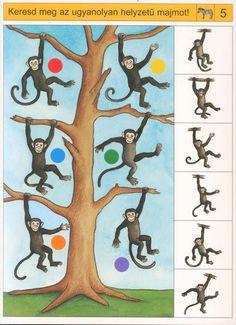 Zoek waar alle apen in de boom hangen en trek er een lijn tussen, free printable Brain Activities, Montessori Activities, Activities For Kids, Preschool Printables, Preschool Math, Safari Theme Birthday, Monkey Crafts, Sequencing Cards, Digital Storytelling
