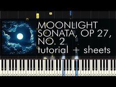 Beethoven - Piano Sonata No. 14 (Moonlight Sonata), Op 27, No 2 - 1st Movement - Piano Tutorial - YouTube Piano Lessons, Music Lessons, Moonlight Sonata, Best Piano, Learning Piano, Piano Tutorial, Piano Sheet Music, Music Theory, Music Education