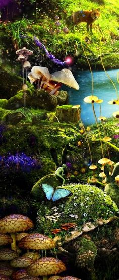 Ideas For Fantasy Art Dreams Wonderland Imagination Fantasy Kunst, Fantasy Art, Enchanted, Magical Forest, Dark Forest, All Nature, Amazing Nature, Illustration, Fairy Art