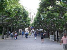 Burgos  #Il paseo