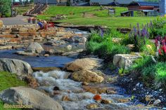 Cooling off by Burgess Creek at Steamboat Resort.   Steamboat Springs, Colorado