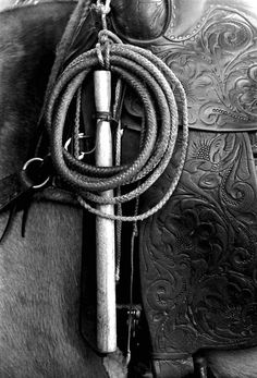 Whip on the saddle of a horse at Buck Island Ranch- Lake Placid, Florida