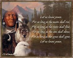 """Funny American Indian Sayings 