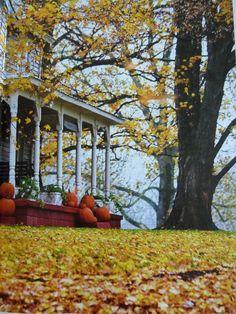 Fall is the season of pumpkins, crisp mornings, and falling leaves.