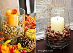 DIY Halloween : DIY Fall Decorating Inspired by Pottery Barn