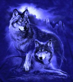 I have a t-shirt with these wolves.
