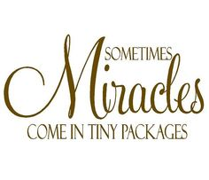 Sometimes Miracles Come in Tiny Packages Twins Vinyl Wall Decal Baby Nursery Vinyl Wall Lettering