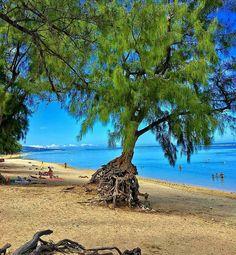 Ermitage 🌅 (Photo envoyée par @zoreil93) N'hésitez pas vous aussi à envoyer vos photos par mp. Liker la page fb : facebook.com/ile974  #lareunion #reunion #gotoreunion  #reunionisland #iledelareunion #reunionparadis #reuniontourisme #igerslareunion #ile974 #island #photo #great #amazing #nofilter  #nature #beauty  #island #good #pretty #beach #plage