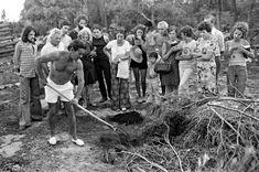 """Au début des années 1970, Jean et Ida Pain, installés à Villecroze dans le Var, """"inventent"""" le compost de brousailles qui permet de faire pousser des légumes sur un sol aride et de protéger la forêt des incendies Sustainable Energy, Permaculture, Pain, Sustainability, Inventions, Pictures, Sun, Composting, Lawn And Garden"""