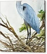 Herons Nest Canvas Print Canvas Art, Canvas Prints, Art Prints, Flying Bird Silhouette, Herons, Blue Heron, Canvas Material, Fine Art America, Nest