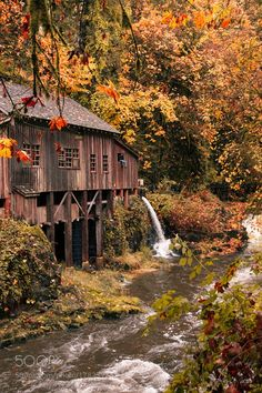 Cedar Grist Mill by Kevin Russell on The Cedar Creek Grist Mill is a building located in Woodland, Washington listed on the National Register of Historic Places. The Friends of the Cedar Creek Grist Mill restored the mill and operate it as a museum. Beautiful World, Beautiful Places, Cedar Creek, Water Mill, Fall Pictures, Fall Pics, Senior Pictures, Cabins And Cottages, Old Barns