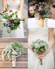 succulent and air plant bouquets