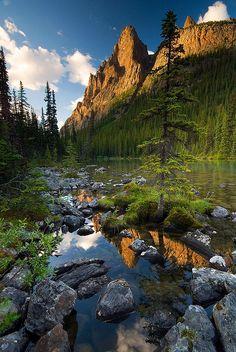 Lago O'Hara, Yoho National Park, Canada