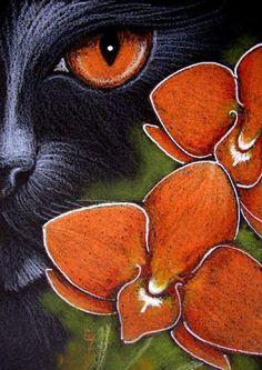 """Black Cat Behind the Orange Dendrobium Orchid"" par Cyra R. Cancel"