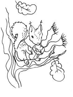 Lassan+itt+az+ősz+és+ha+ősz+akkor+nekem+mókus.+:)