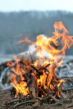 what is it about fire, that draws us in? Like the fire that is over us ?