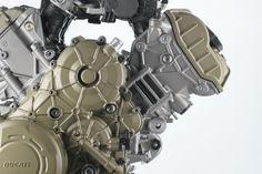 LinkedIn Ducati Motor, Sign, Signs, Board