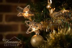 Christmas at Dream Cottages