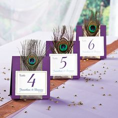 Without the feather!!!!  Peacock Wedding Table Numbers Idea - OrientalTrading.com