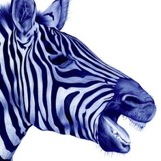 bic pen made zebra